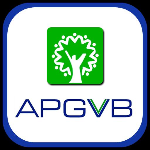 Andhra Pradesh Grameena Vikas Bank ( APGVB )